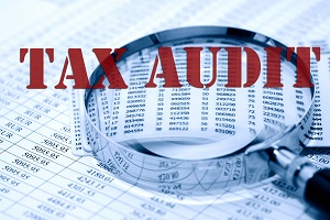 tax audit ibbz accounting